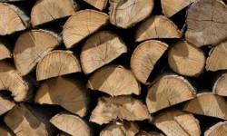 caldera leña biomasa