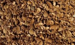 cascara de almendra biomasa